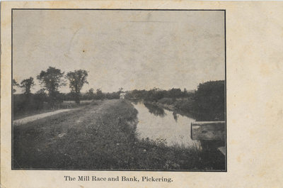 The Mill Race and Bank