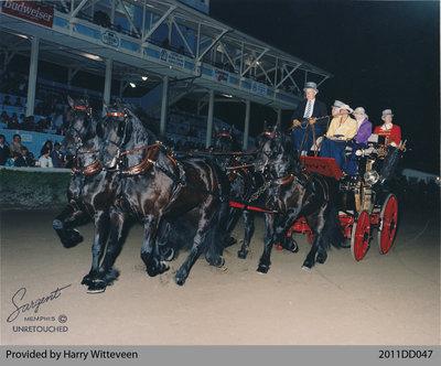 Witteveen Friesian Horses