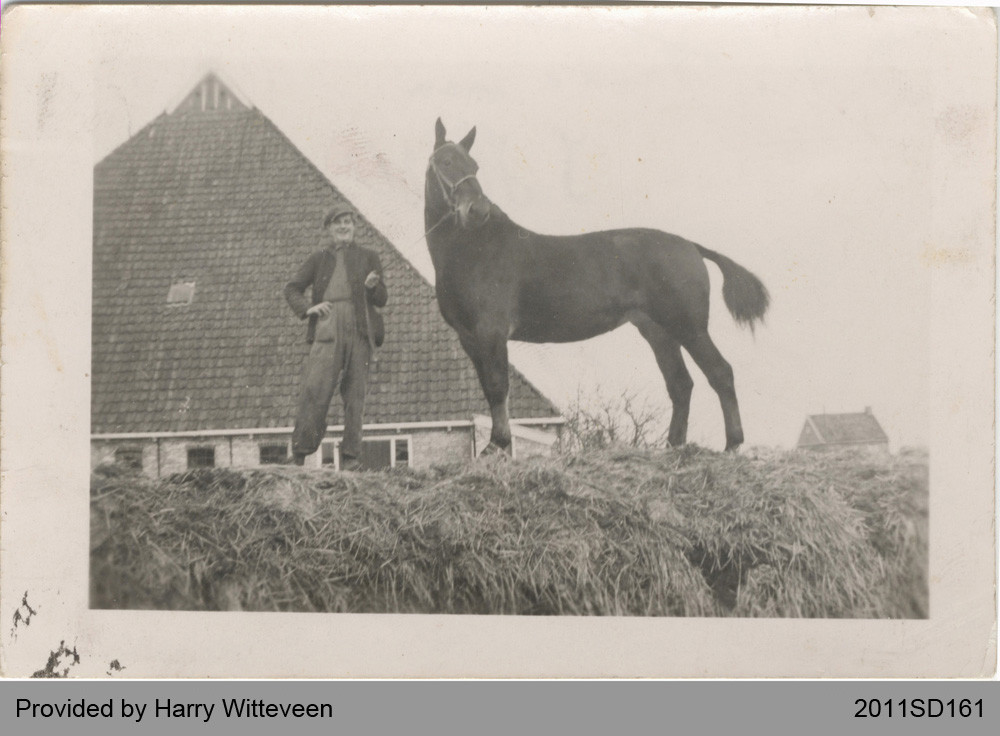 Harry Witteveen with a Horse