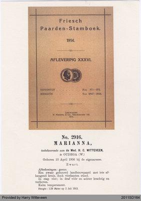 Friesian Horse Studbook, Marianna