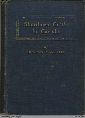 Shorthorn Cattle in Canada