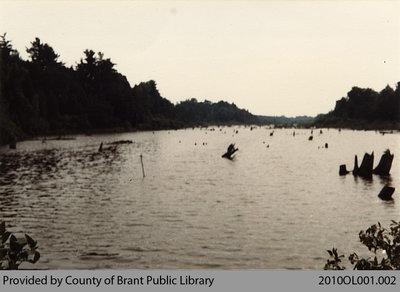 Vivian's Mill Pond