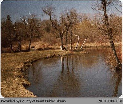 Lion's Park Pond