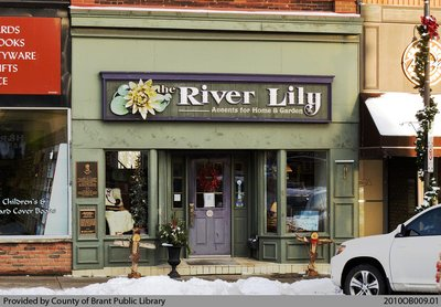 The River Lily