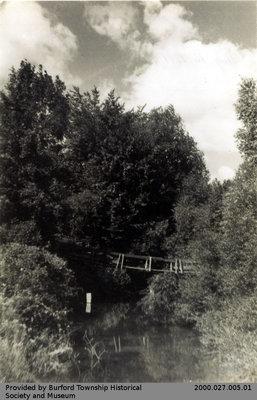 Swing Bridge Over Whiteman's Creek