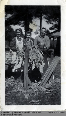 Helen Barnes, Greta Batson, and Marie Shellington