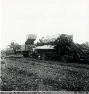 York Farmers With Their Equipment