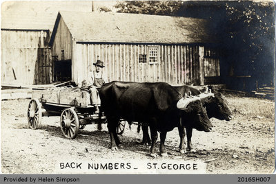 Back Numbers Postcard