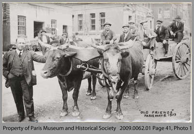 Man with Ox-Team and Cart in Paris, 1913
