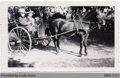 Mrs. Jas. Biggar & Mrs. Geo. Houlding Driving to Women's Institute Meeting, c. 1900