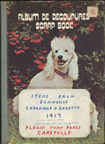 Items from Dunnville Chronicle + Gazette 1917 (+1913-1918-1921) (Puppy Cover)