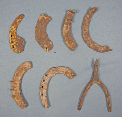 Horse Shoes and Spur Unearthed from Niagara's Battlefields