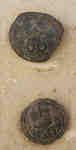 66th Berkshire Regiment of Foot Button
