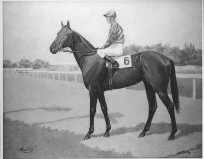 LH0501 Horse Racing, Herometer - McLaughlin
