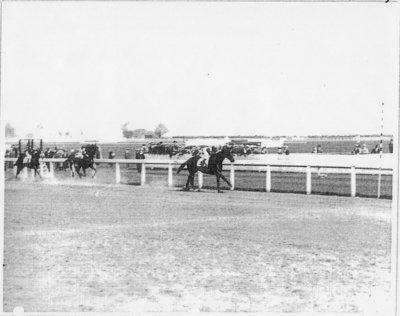 LH0506 Horse Racing - McLaughlin