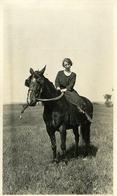 LH1126 Animals - Horses