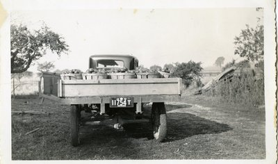 LH1133 Vehicles - Truck