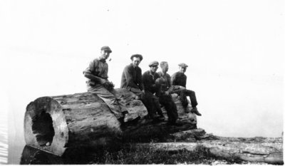 LH1247 Hobbies - Camping - Giant Log
