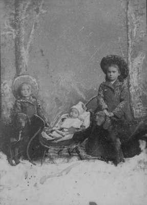 LH1356 H. E. Morphy's Children