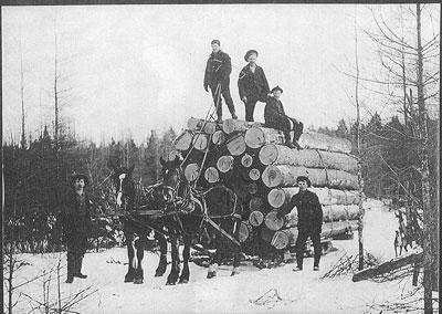 Logging in Rosseau - RI0071