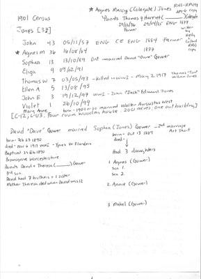 Census information, 1901 - families of Jones, John & Agnes Mercy (Colegate); Gower, David & Sophia (Jones) - RP0491