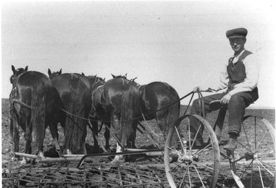 John Weekes with cultivator  c.1910
