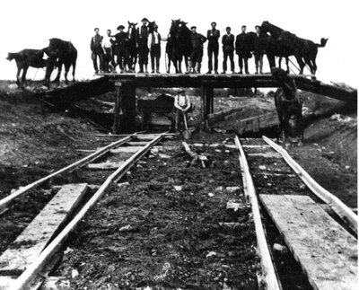 Horses laying down rail for C.N.R. in 1912 at Lombardy Station
