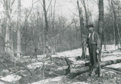 Charlie Chant Cutting a Tree