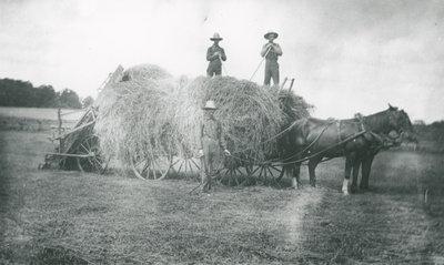 Haying at the Earl farm near Elgin c.1925.