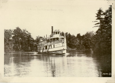 Steamboat- Rideau King