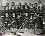 Maxwell's Hockey Team