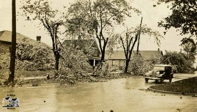 Tree Branches Blown Down After Storm, June 1933