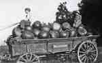 Children on a wagon load of pumpkins