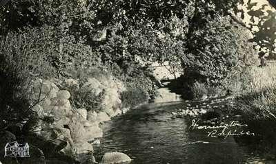 Harrington Rapids