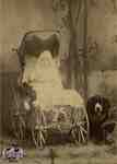 Baby seated in a carriage with a dog beside it