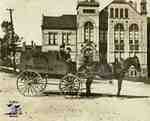 "Horse with carriage that reads ""The Whyte Packing Co."" in front of the Stratford Court House"
