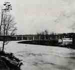 Sarnia Bridge, the Thames River and the Ashery as seen from the Victoria Bridge in 1865