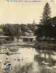 Dam and boathouse