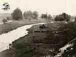 Otter Creek on farm of James Fairbairn looking east