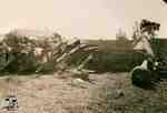 Plane crash of Leovens Brothers on George Allen Farm, 1937