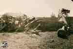 Plane crash of Leovens Brothers on George Allen Farm, 1937