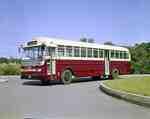 Motor Bus