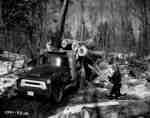 Logging in Haliburton with Wm. A. Curry, Lumberman.