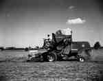 Combine Harvesting in Tavistock, Ontario.