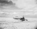 Windrowing on an IHC McCormick 161 self-propelled windrower, in Regina, Saskatchewan.