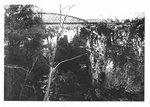 View of the first Irvine bridge, David St., Elora.