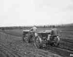 Unidentified Men Planting Potatoes, Sherbrooke, QC