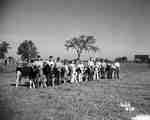 Junior Farmers Cattle Showing, Binbrook, ON