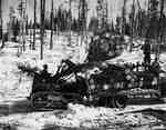 Crawler Tractor Loading Logs, Kenora, ON