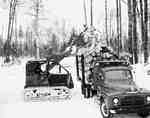 Crawler Tractor Loading Logs onto Truck, Cameron Falls, ON